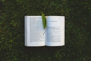 Ask the Readers: What Is the Best Book That You Read Recently?